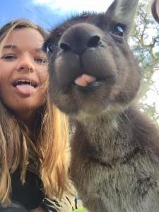 Kangaroo selfie!
