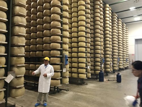 Cheese city at the Grana Padano factory