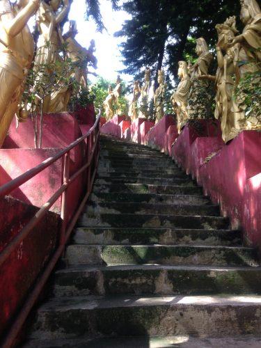 10,000 Buddha Walk