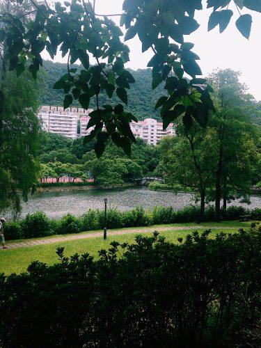 CUHK Garden